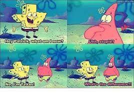 Stupid texas